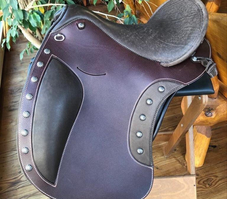 "Adjustable saddles; choosing ""The One"""