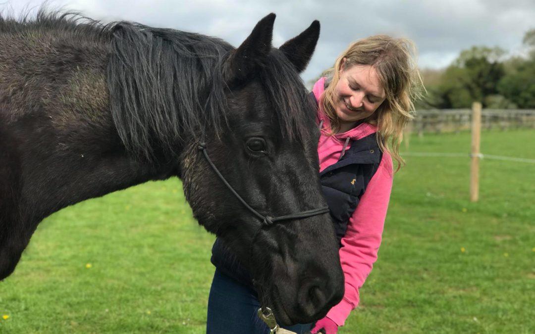 Training Anxious Horses