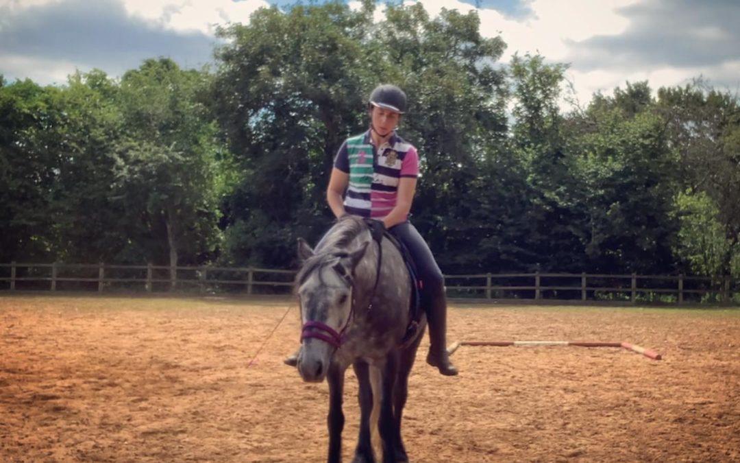 Natural Horsemanship? Just Good Horsemanship