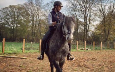 Natural Horsemanship – Why We Think it's Just Good Horsemanship